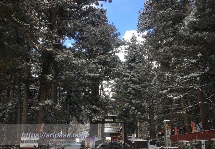 冬の日光東照宮入口